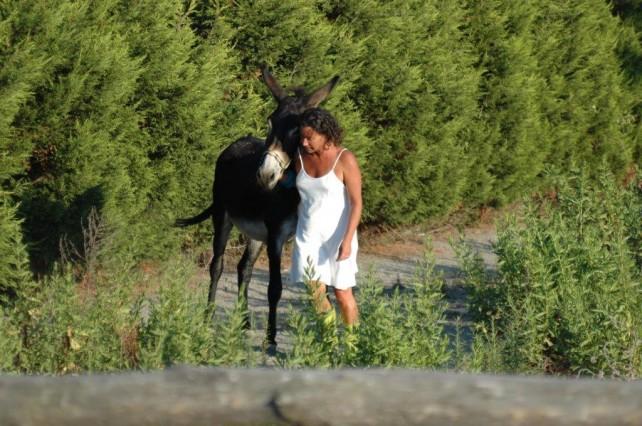 Giulio e Valentina | Io sto con l'asino